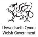 welsh assembly government